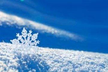 Ученые выяснили почему снег белого цвета