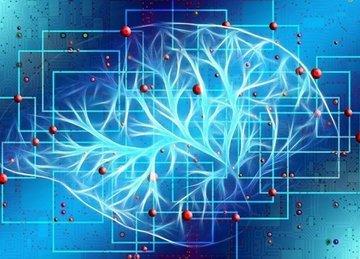Российские ученые обучили нейросеть находить метастазы рака за 10 секунд
