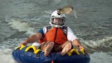 Летучих рыб Иллинойса сняли на скоростную камеру