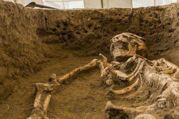 90 000-летняя девочка была древним человеческим гибридом