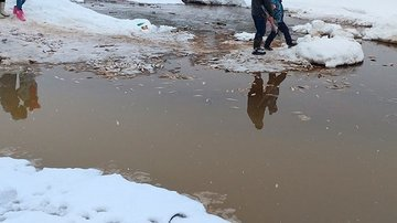 В Сургуте рыба выбрасывается на берег