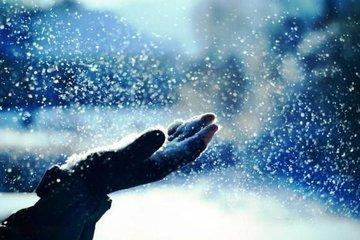 Почему снег делает мир таким тихим?