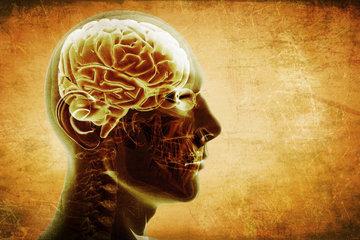 Почему многие ученые не доверяют эволюционной психологии