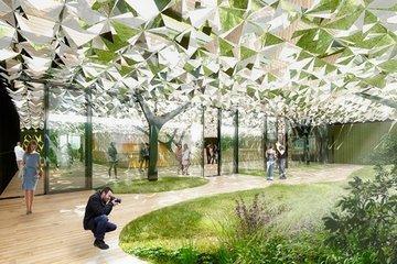 Голландские архитекторы создали эффект леса в офисе