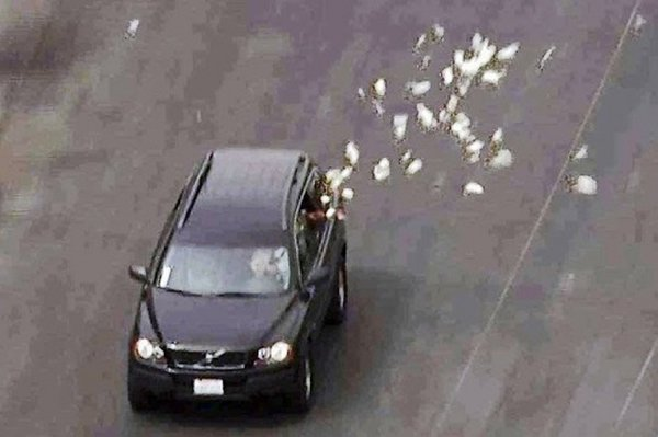 Bribed officials throw cash out of window during car chase. 63092.jpeg