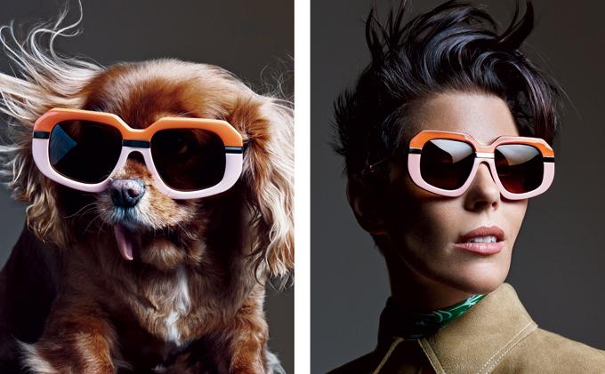 Toothless Toast stars in luxury eyewear campaign