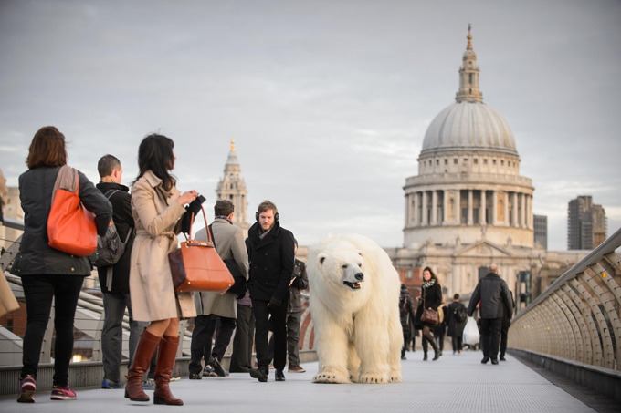 Polar bears roaming in London