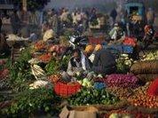 Africa...Organic Produce: Back to Basics