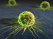 Russian scientists develop liquid magnet to fight cancer