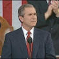 The Legacy of Bush V