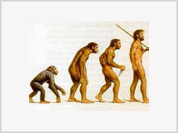 Creationists right on entropy, evolution