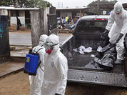 Ebola Virus Disease: What is going on?