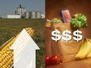 Global food prices: Panic?