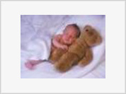 Teddy Bear Name Causes Uproar in Sudan