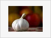 Two cloves of garlic a day keep doctors far, far away