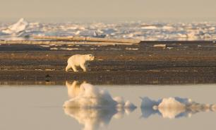 Putin to check cleaning in Franz Josef Land