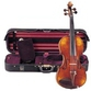 Russian collector pays .1 million for rare Nicolo Paganini violin