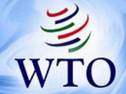 Russia may exercise its economic power once it joins WTO