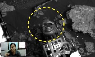 Curiosity rover finds live lizard on Mars? Video