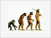 Are there natural limits to evolution?
