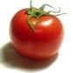 Tomato vaccine