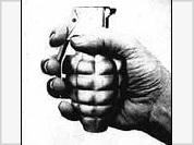 Using a fake hand grenade to catch a patrol car