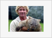 Crocodile Hunter dies fulfilling the duty