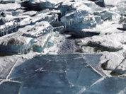 Surviving under ice