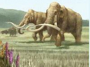 60,000-year-old mammoth bones uncovered in Russia