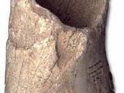 Symbolic thinking: new clues