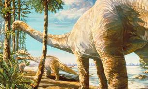 Previously unknown dinosaur species unearthed in Siberia