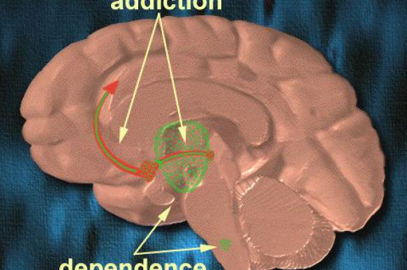Dopamine for the Winners: how our mind's reward system drives political ambition and affects civilization