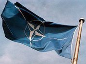 NATO's Honor