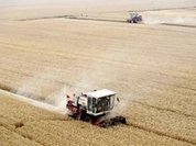 Climate-cooling policies threaten food supplies