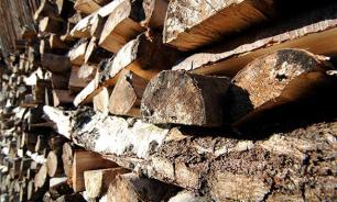 Ukraine to switch to firewood