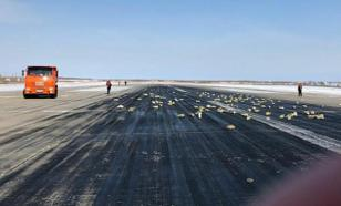 Russian plane carrying too much gold falls apart during takeoff scattering gold bars