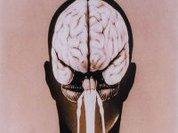 Resonance explains how the brain processes jokes