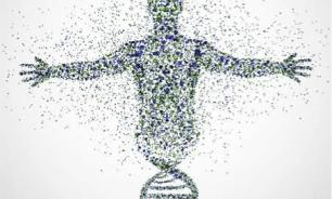 The Myth of the Gene: Genetics, Epigenetics and the Organism-Environment Loop