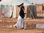 Western Sahara: Now it gets serious