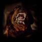 Rabid rottweiler attacks girl biting her head