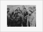 Holocaust denial excludes freedom of speech and artistic expression