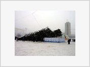 Russia's Most Expensive Christmas Tree Falls Down
