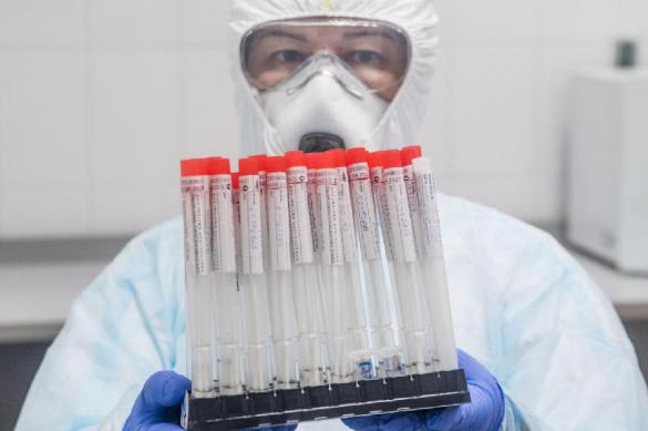Coronavirus kills both WHO and UN
