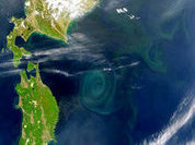 Giant ocean whirlpools puzzle scientists