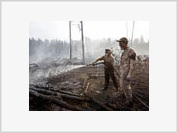 Forest Fires Cause Damage of $15 Billion to Russian Economy
