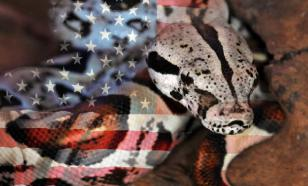 America and Pakistan in Search of Peace and Conflict Resolution