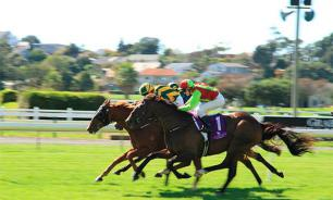 A day at the races - Horse Racing, a sport not just for kings!