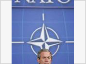 NATO: too much fuss and petty achievements