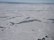 Arctic shrinks faster than Antarctica expands