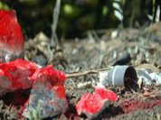 Cluster bombs, unsafe for living things